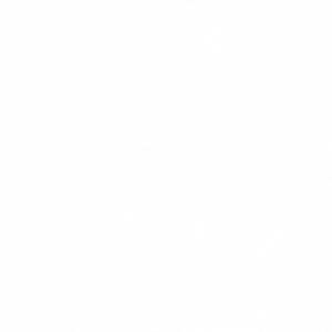equality_white 3
